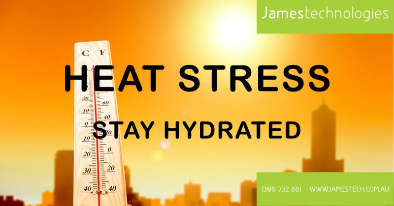 heat-stress-web-copy